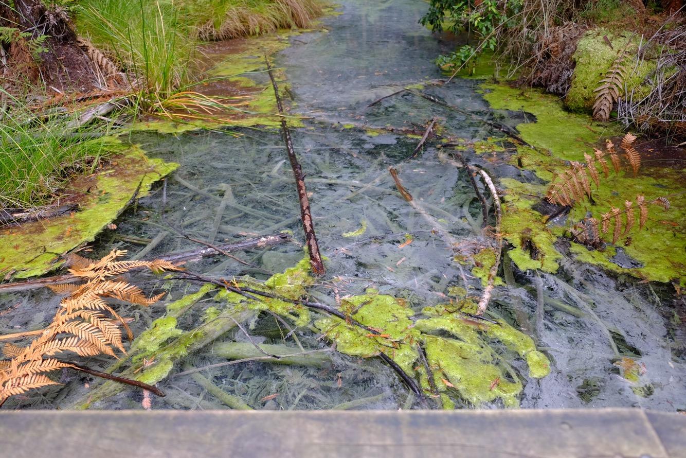 Vodní hladina vypadající jako sklo