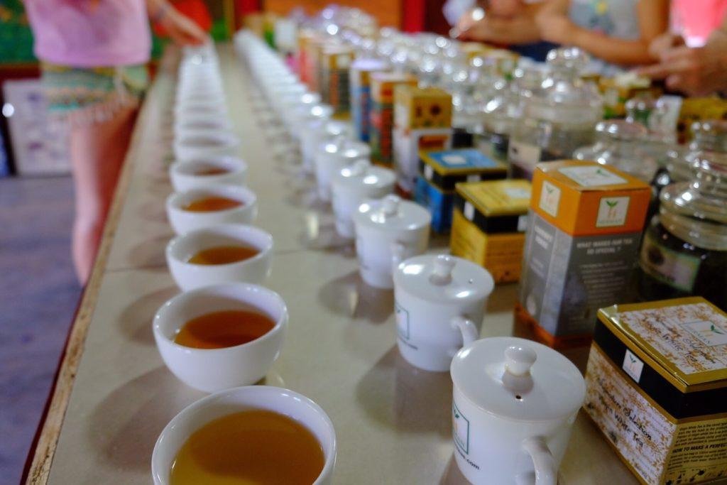 ochutnávka čajů